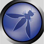 OWASP Triangle Chapter for March 2016